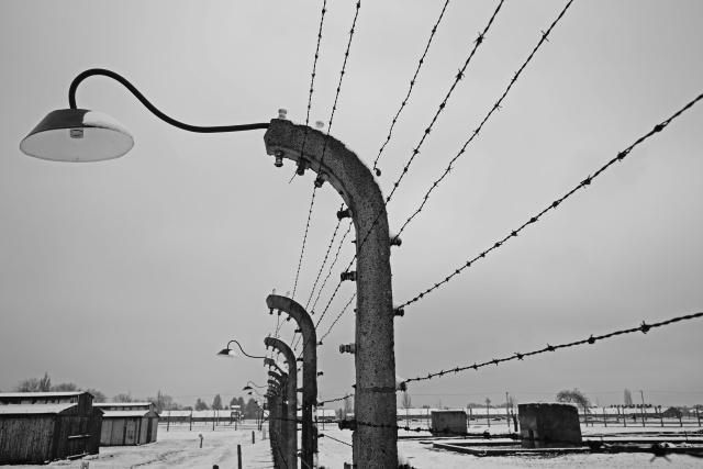 41_Auschwitz_2012