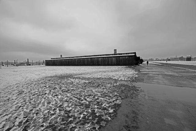 42_Auschwitz_2012