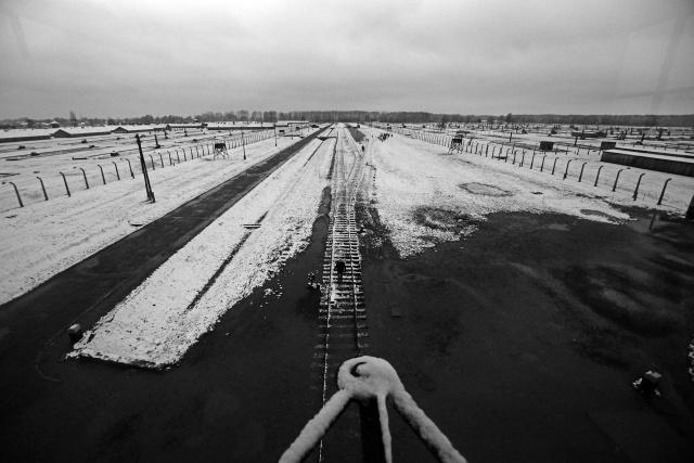 45_Auschwitz_2012