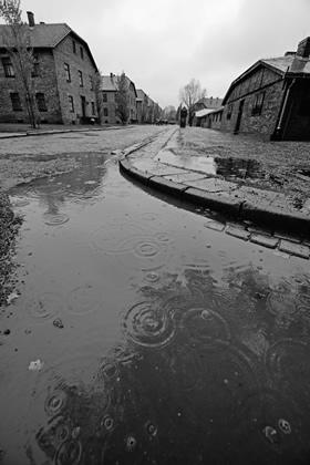 4_Auschwitz_2012
