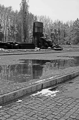 6_Auschwitz_2012