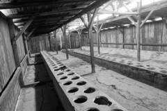 10_Auschwitz_2012