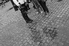 11_Auschwitz_2012