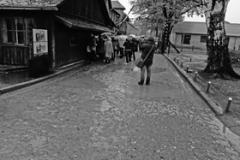 14_Auschwitz_2012