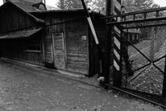1_Auschwitz_2012