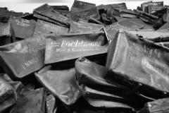 20_Auschwitz_2012