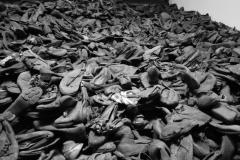 21_Auschwitz_2012