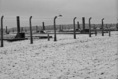 85_Auschwitz_2012