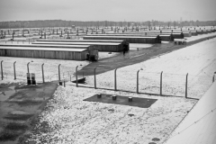 87_Auschwitz_2012