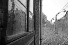 98_Auschwitz_2012
