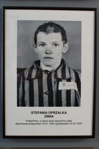 201410 Auschwitz (242)