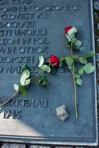 201410 Auschwitz (303)
