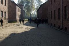 201410 Auschwitz (227)