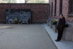201410 Auschwitz (246)