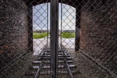 201710 Auschwitz-16